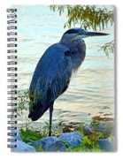 Navarre Gbh I Mlo Spiral Notebook