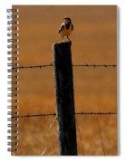 Nebraska's Bird Spiral Notebook