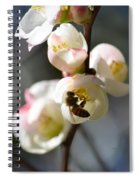 Nectar Hunting In Spring 2013 Spiral Notebook