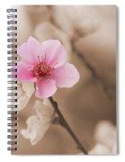 Nectarine Flower Blooming Spiral Notebook