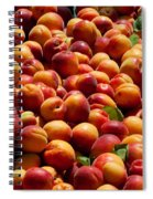 Nectarines For Sale At Weekly Market Spiral Notebook