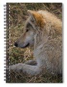 Needed Break Spiral Notebook