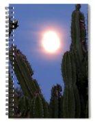 Needles Around The Moon Spiral Notebook