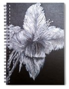 Negative Essence Spiral Notebook