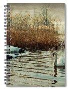 Neglected Spiral Notebook