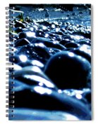 Neighborhood 8 - Seagull Spiral Notebook