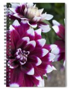 Neighbors Garden Treasures Spiral Notebook