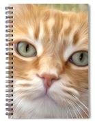 Yellow Cat Digital Art Spiral Notebook