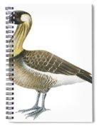 Nene Spiral Notebook