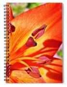 Neon Asiatic  Spiral Notebook