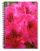 Neon Azalea  Spiral Notebook
