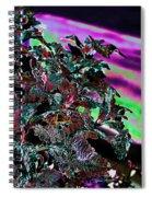 Neon Coleus Spiral Notebook