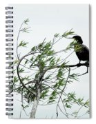 Neotropic Cormorant Spiral Notebook