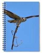 Nest Building Osprey Spiral Notebook