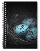 Nest Of 3  Spiral Notebook