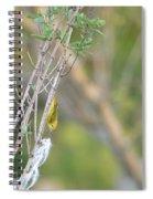 Nest Worrrk Spiral Notebook