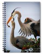 Nestbuilding Spiral Notebook