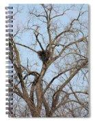 Nested Spiral Notebook