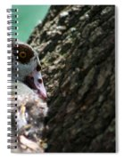 Nesting Spiral Notebook