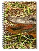 Nesting Alligator Spiral Notebook