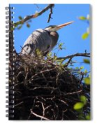 Nesting Great Blue Heron Spiral Notebook