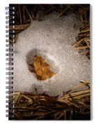 Nesting Leaf Spiral Notebook
