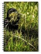 Nesting Material Spiral Notebook