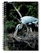 Nesting Season Spiral Notebook