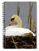Nesting Swan Spiral Notebook