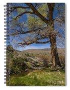 Nevada Cottonwood Spiral Notebook