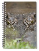 Never Smile At A Crocodile Spiral Notebook