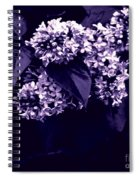 New Begining  Spiral Notebook