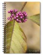 New Berries Spiral Notebook