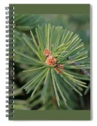 New Blue Spruce Buds Spiral Notebook
