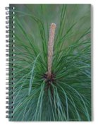New Growth In Life Spiral Notebook