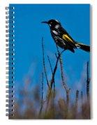 New Holland Honeyeater Spiral Notebook