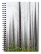 New Jersey Pine Barrens Spiral Notebook