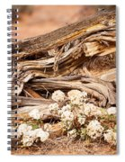 New Life Grows Spiral Notebook