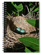 New Life - Robin's Nest Spiral Notebook