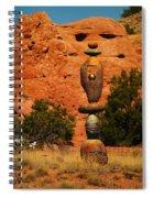 New Mexico Art Spiral Notebook