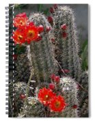 New Mexico Cactus Spiral Notebook