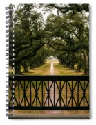 New Orleans Live Oak Spiral Notebook