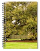 New Orleans' Tree Of Life 2 Paint Spiral Notebook