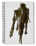 New Photographic Art Print For Sale   Day Of The Dead Skeleton On A Stick Spiral Notebook