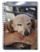 Dog Tired Spiral Notebook