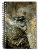 Elephant Face Spiral Notebook