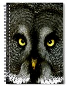 New Photographic Art Print For Sale   Great Grey Owl Spiral Notebook