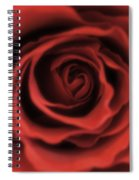Close Up Heart Of A Red Rose Spiral Notebook
