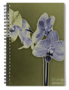 New Photographic Art Print For Sale Orchids 10 Spiral Notebook