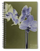 New Photographic Art Print For Sale Orchids 9 Spiral Notebook